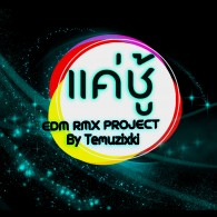 แค่ชู้ (EDM RMX Project by Temuzixki) - Single
