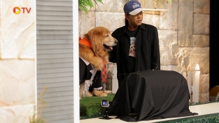 The Dog Partner EP 08