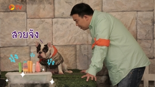 The Dog Partner EP 14