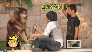 The Dog Partner EP 22