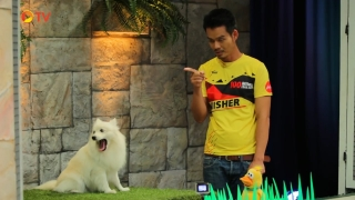 The Dog Partner EP 53