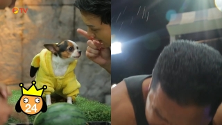The Dog Partner EP 57