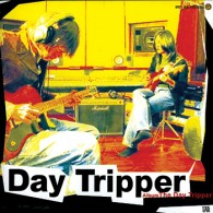 The Day Tripper