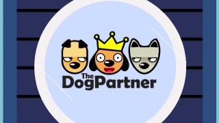 the dog partner