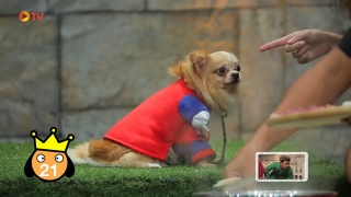 The Dog Partner EP 60 30 ธ.ค. 2559